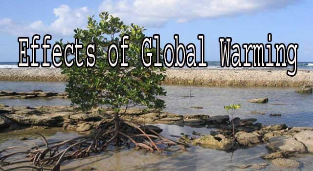 6 Effects of Global Warming