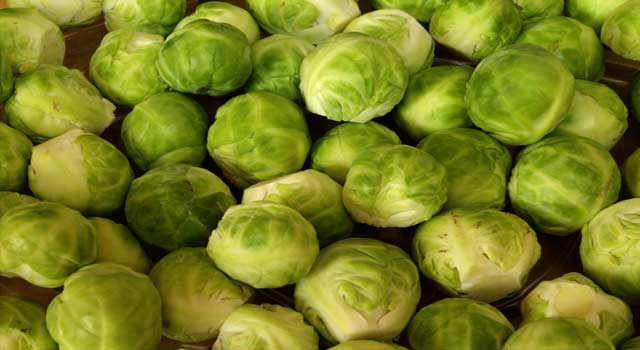 What are the Health Benefits of Brussel Sprouts