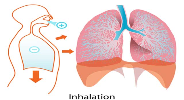 Asthma Definition – What is Asthma