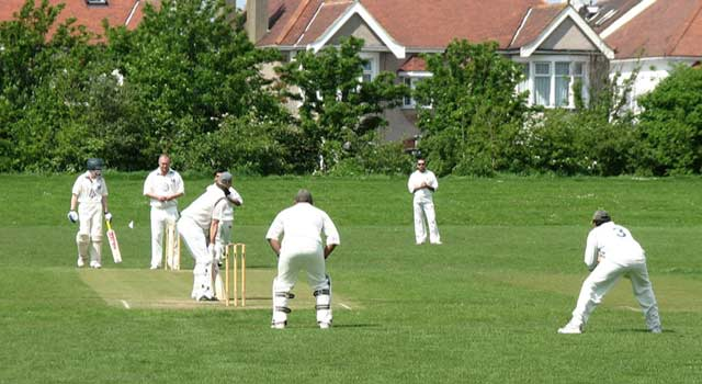 How to Play Cricket Step by Step