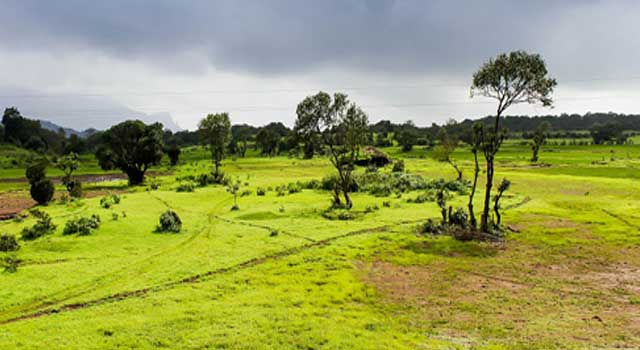Why Monsoon Is Considered A Unifying Bond
