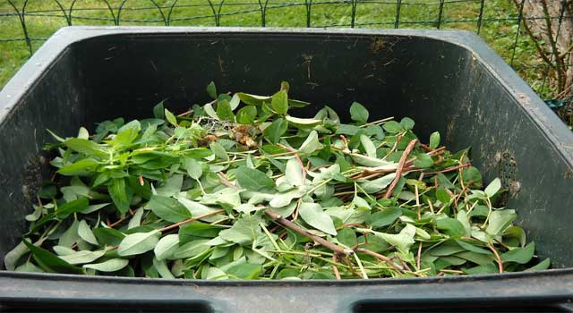 How to Utilize Green Waste