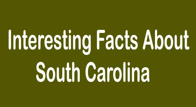 Top Interesting Facts about South Carolina