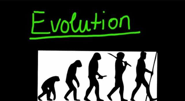 what is evolution and what is it responsible for