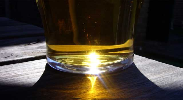 Why Alcohol Is Harmful For Body